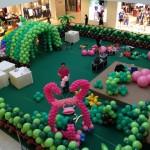Northpoint Balloon Setup