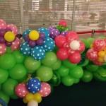 Singapore Balloon Flowers