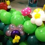 Singapore Small Balloon Flower