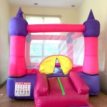 Party Bounce Castle