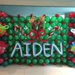 AIDEN Balloon Backdrop Display