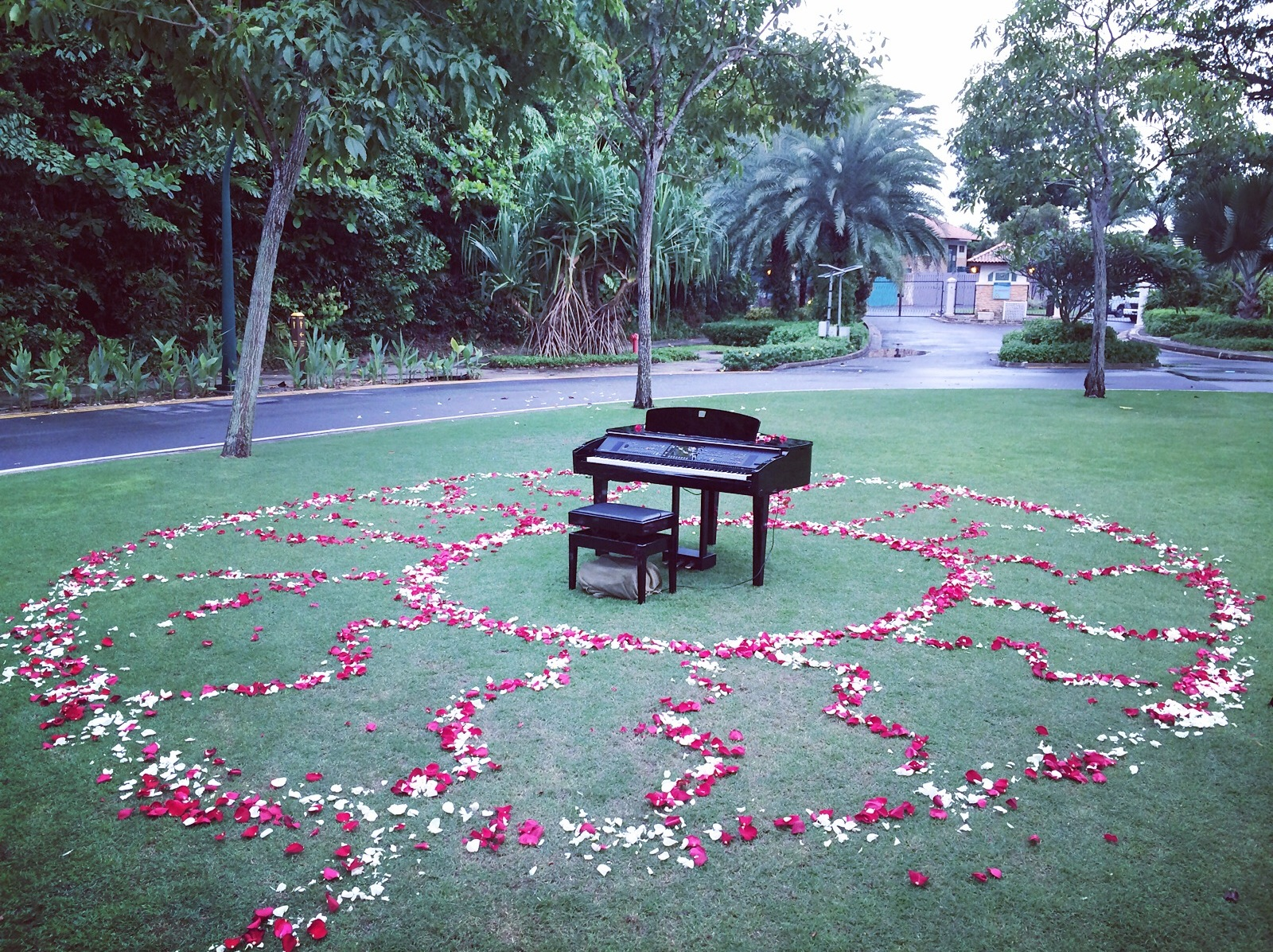 Wedding Proposal Idea Singapore