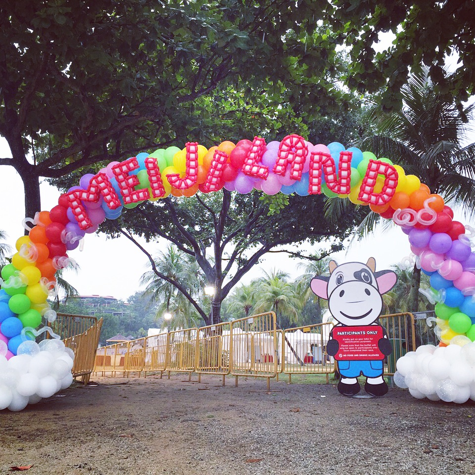 Large Balloon Entrance Arch