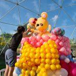 Balloon Decoration Artist