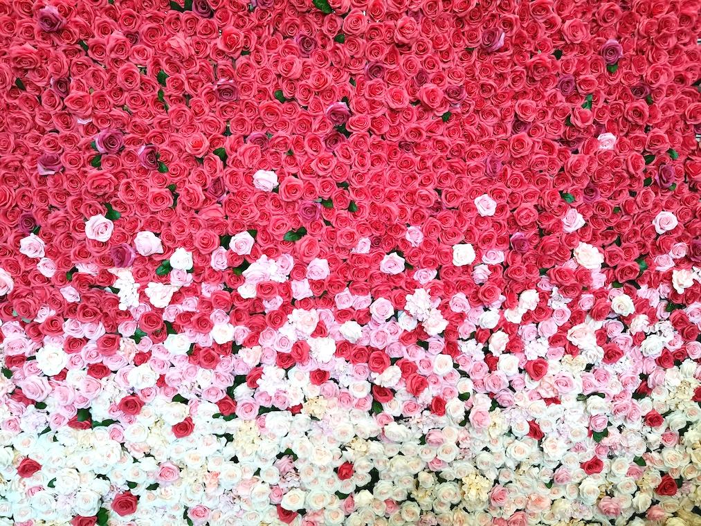 Flower wall backdrop rental for wedding