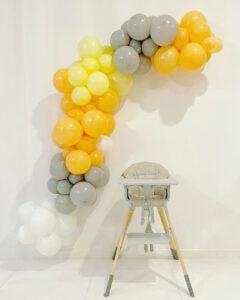 Simple Organic Decor for baby Photoshoot